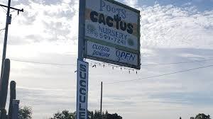 Poot's Cactus Nursery - Reviews   Facebook