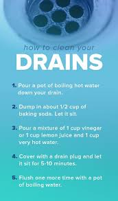 how to clean bathtub drain with vinegar awesome 275 best cleaning images on of how