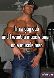 Free gay muscle bear pictures