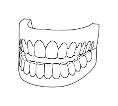 Small Picture Picture of Full Teeth in Dental Health Coloring Page Color Luna