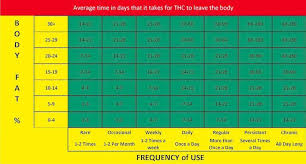 How Long Does Marijuana Stay In System Chart Weed Chart For How Long It Stays In Your System Www