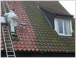 roof tiles paint colours tile design ideas