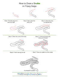 snake drawings step by step.  Step How To Draw A Snake  Quick StepbyStep Tutorial Inside Drawings Step By