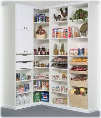 Kitchen Closet Shelving Kitchen Room Built In Shelves For The Pantry Kitchen Closet