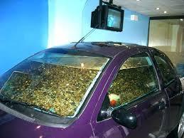 diy betta fish tank ideas cool good aquarium food best to own coolest home accessories fish tank