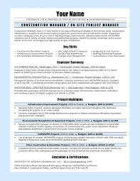 Project Coordinator Resume Summary Download Project Administration ...