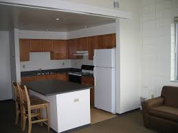 Kitchen Theme For Apartments Apartment Modern Minimalist Black Ad White Kitchen Decor For