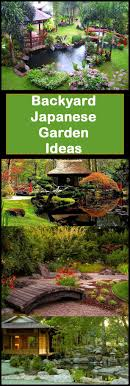 Japanese Garden Plants Best 20 Japanese Garden Plants Ideas On Pinterest Shade Plants