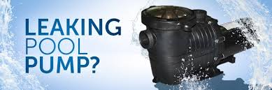 pool pump leaking at housing. Modren Housing Throughout Pool Pump Leaking At Housing R