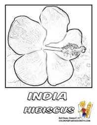 Small Picture flower Page Printable Coloring Sheets Flower Coloring Sheets