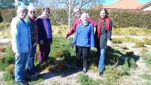 Weeds flourish after highway widening | Blue Mountains Gazette | Katoomba,  NSW