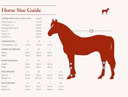animal sizes chart sizing charts for horses back on track sa