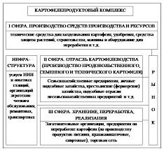 Контрольная работа Организационная структура и межотраслевые  Организационно функциональная структура картофелепродуктового подкомплекса