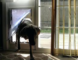 sliding glass door dog door insert security boss sliding glass door pet door insert