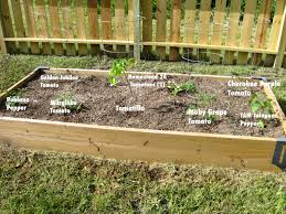 4x8 raised bed square foot garden