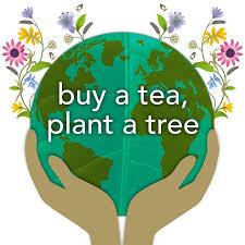 Pukka Herbs <b>Elderberry & Echinacea</b> with <b>Elderflower</b> Tea Bags ...
