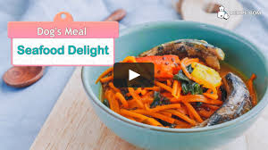 Seafood Delight on Vimeo