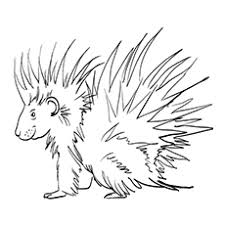 Small Picture Top 10 Free Printable Porcupine Coloring Pages Online