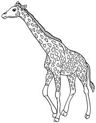 Small Picture cute giraffe coloring pages BestAppsForKidscom