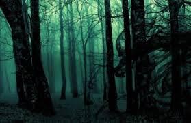 dark forest wallpaper 1920x1080. Exellent 1920x1080 Dark Ghost Gothic Wood Trees Fantasy Wallpaper 1920x1080 340x220 In Forest R