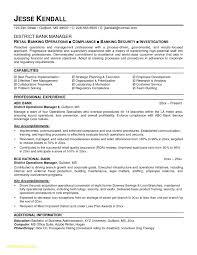Elegant Banking Sales Resume B4 Online Com Page 1532