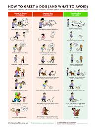 Dog Training Chart How To Greet A Dog Greet In A Non Theatening Manner