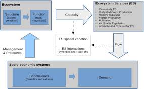 Components Of Ecosystem Flow Chart Assessing The Capacity And Flow Of Ecosystem Services In