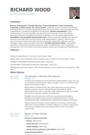 Vice President Of Business Development Resume Samples Visualcv