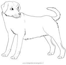 Disegno Labrador3 Animali Da Colorare