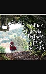 Into The Woods Quote Quotes Pinterest Quotes And Into The Beauteous Woods Quotes