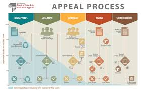 icon link to appeal process flowchar
