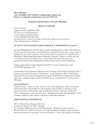 Charming Accounts Manager Resume Sample India Images Resume