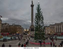 Trafalgar Square Christmas Tree Stock Photos & Trafalgar Square ...