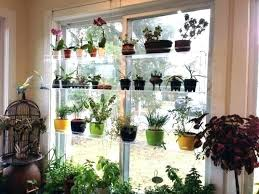 hanging window shelves window plant shelf window plant stand bathroom sweet inspiration hanging window plant shelves hanging window shelves