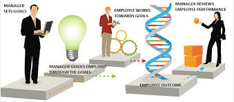 Different Types Of Performance Appraisal System   Synergita Blog