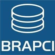 Publicações - artigos em revistas brasileiras de ciência da informação [BRAPCI: papers in Brazilian LIS journals