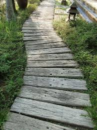 rustic whitewashed wooden plank path contrasts the greenery and brings a rustic and vintage feel to