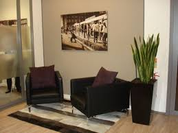 decorating ideas for office. professional office decorating ideas plant for s