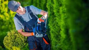 Why You Need To Set Up A Pension For Your Cleaner Carer Or Gardener