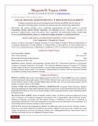 Human Services Resume Samples Interpreter Velvet Jobs Professional