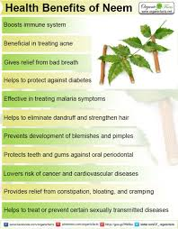impressive benefits of neem organic facts neeminfo1