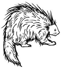 Small Picture 64 best Animal Coloring Pages images on Pinterest Colouring