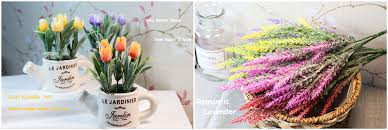 Zinmol Decor Store - Small Orders Online Store, Hot Selling and ...