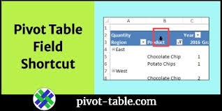 excel pivot table shortcut for field