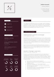 New Resume Template Cv Template Professional Resume Modern Cv New 13