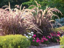 Small Picture sun landscaping ideas This flower garden design includes both