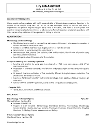 Lab Technician Requirements Lab Support Technician Responsibilities