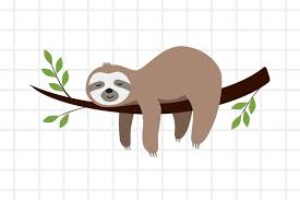 Wish life was a little slower? Cute Cartoon Sloth Sleeping On A Branch Svg Png Eps Ai 654042 Illustrations Design Bundles