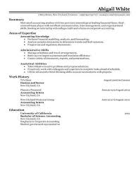 Internship Resume Examples Adorable 60 Outstanding Accounting Finance Resume Examples Templates From