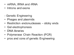 midterm structure one diagram bubble sheet multiple choice  7 mrna trna and rrna introns and exons genetic engineering phages and plasmids restriction endonucleases sticky ends gel electrophoresis dna libraries